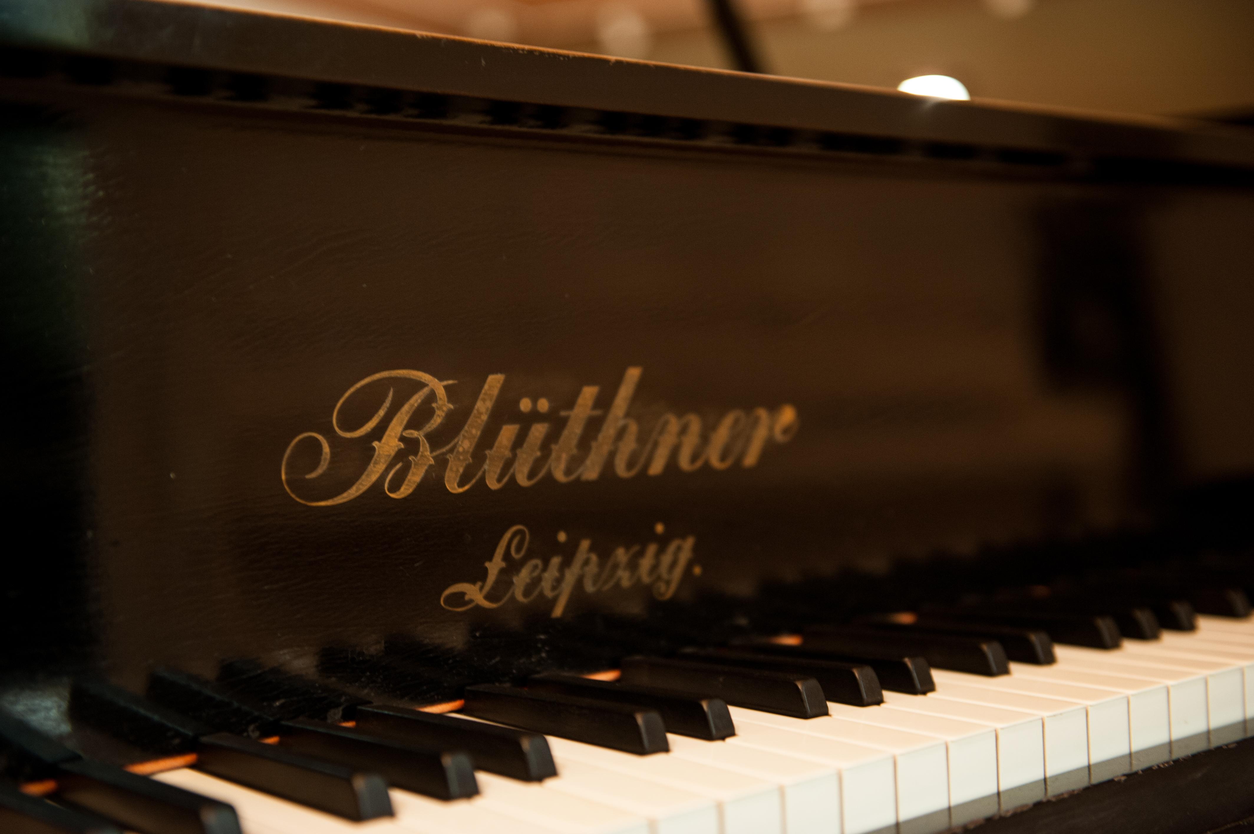 Blüthner 190 Aliqout